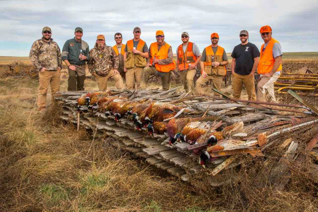 Hunters who successfully harvested pheasants